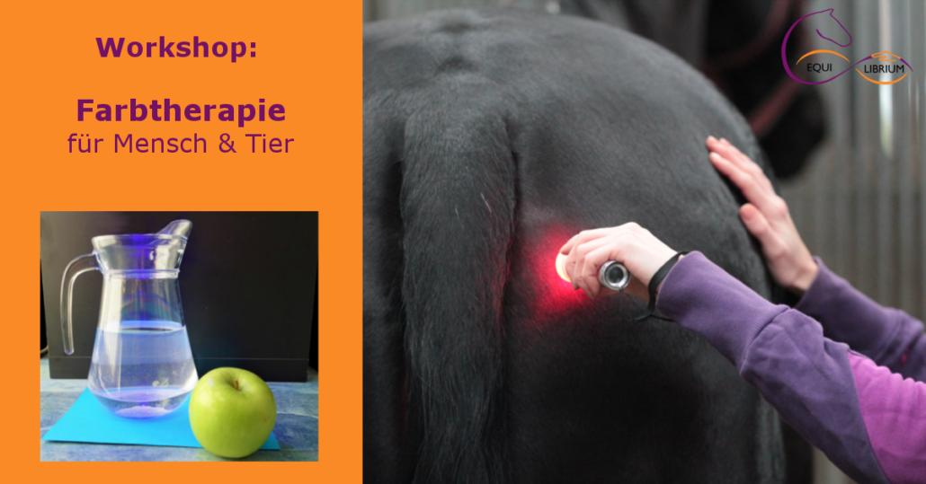 Workshop Farbtherapie für Mensch und Tier